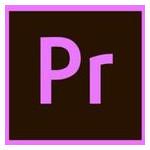 Офисное приложение Adobe Adobe Premiere Pro CC teams Multiple/Multi Lang Lic Subs New (65297627BA01A12) фото №1