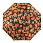 Зонт женский полуавтомат Ferre HDUE-F370 фото №1