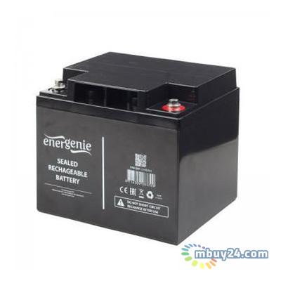 Батарея к ИБП EnerGenie 12В 33Ач (BAT-12V33AH)
