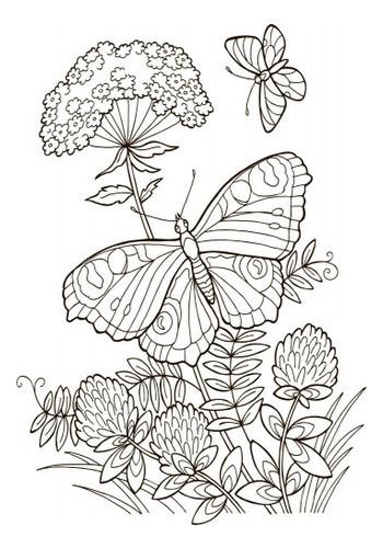 Большая книга раскрасок Ranok Creative Для девочек укр (670014)