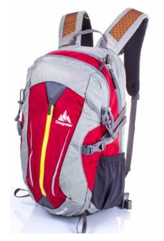 Мужской рюкзак Onepolar W1595-red