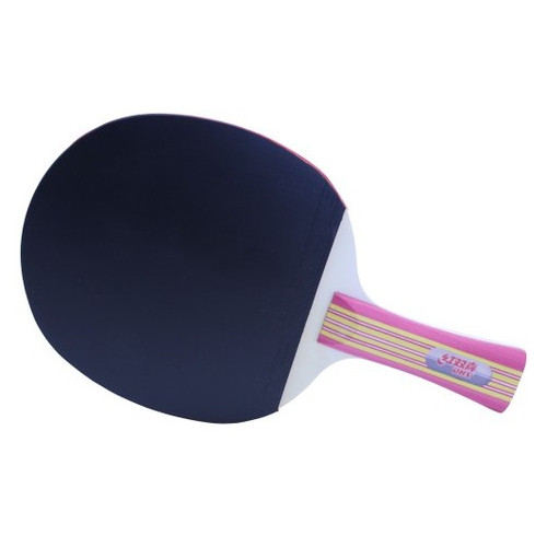 Набор для настольного тенниса DHS Type 2