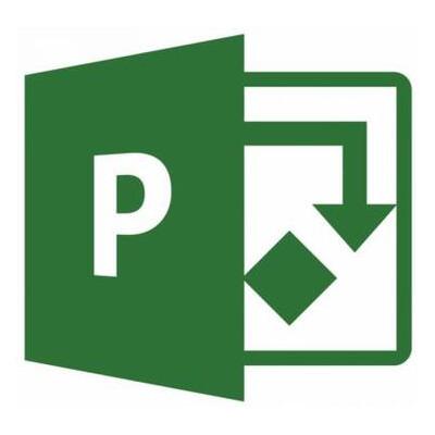 Офисное приложение Microsoft Project Standard 2019 (DG7GMGF0F4LD_0002)