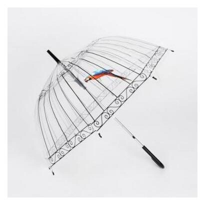 Купольный зонт прозрачный