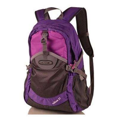 Детский рюкзак Onepolar W1581-violet